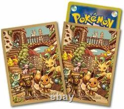 Pokemon Card Sword & Shield Expansion Pack Eevee Heroes Eevee's Set Gym